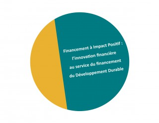 2014 financement à impact positif_2