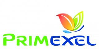 Logo Extrem V2