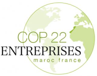coordination des entreprises COP22 maroc france